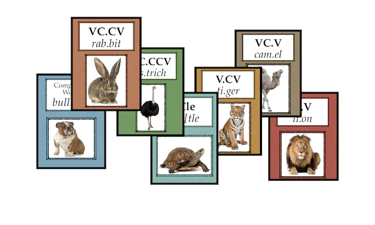 PSS2 Syllable Division Animal Posters (New)