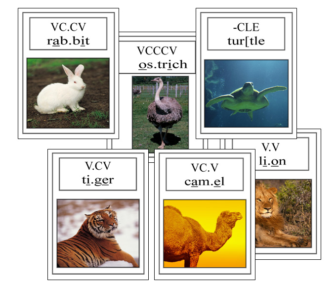 PS2 Syllable Division Animal Posters