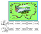 Phrase & Sentence Game: Snakes Around the Lake